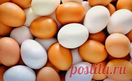 Увлажняющая маска для сухих волос из яйц | Секреты красоты | Яндекс Дзен