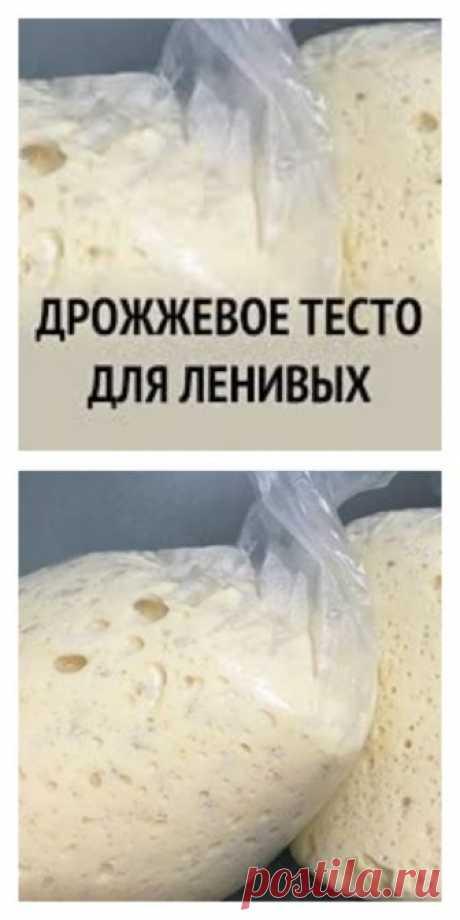 Дрожжевое тесто «Для ленивых». Очень быстро и просто - tolkovkysno.ru
