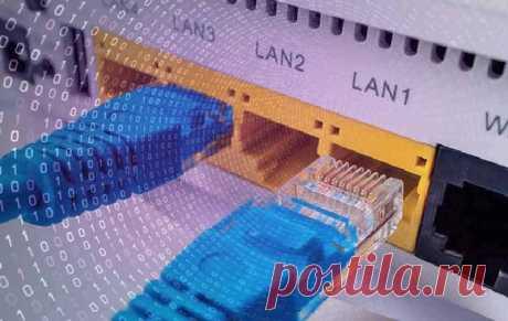 Локальная сеть (LAN) | Объяснение локальной сети ЛВС