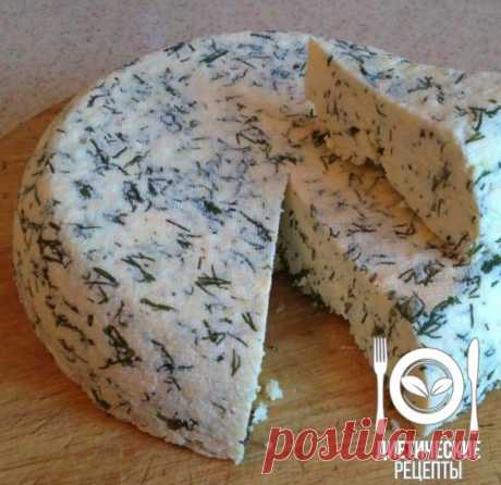 Вкуснейший домашний сыр  / Солнышко