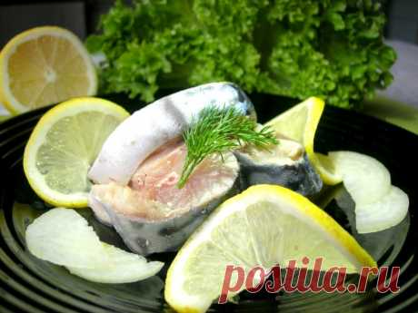 Скумбрия, маринованная по-домашнему — Кулинарная книга - рецепты с фото