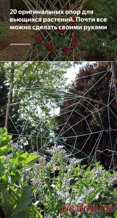 20 оригинальных опор для вьющихся растений. Почти все можно сделать своими руками | Дачная фанатка | Яндекс Дзен