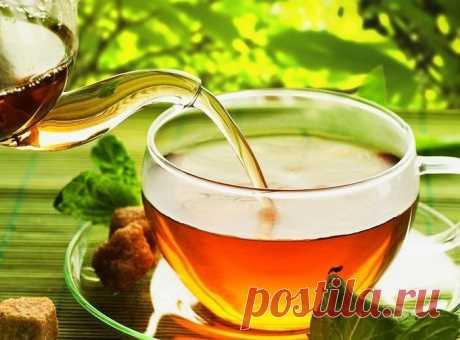 План диеты с зеленым чаем. Потеряйте 3-5 кг в неделю без вреда для вашего здоровья