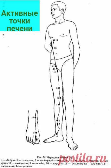 Система оздоровления от китайского доктора Фучжуна. Простой массаж живота и другие техники | 7 минут на красоту | Яндекс Дзен