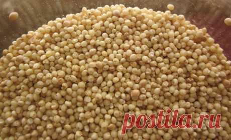 Семена, поразившие даже врачей. Они помогают контролировать диабет и полностью восстанавливают функции печени и почек