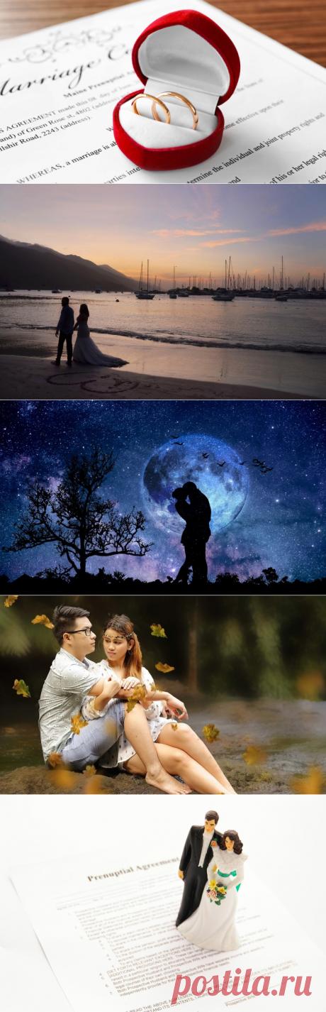 Завидный жених, или Зачем нужен брачный договор? | Деньги