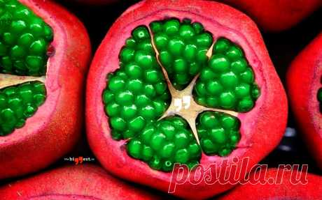 Самые необычные фрукты в мире, которые стоит попробовать (ФОТО) Взгляните на самые необычные фрукты в мире. Это не просто плоды экзотических растений, это удивительные по форме и содержанию фрукты.