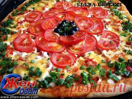 Пицца » Томатная»