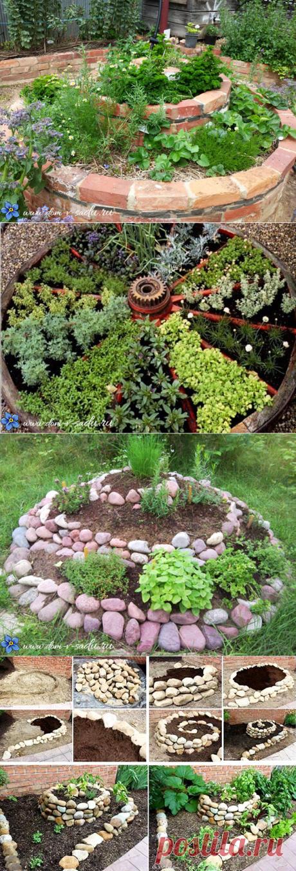 Как великолепно можно вырастить пряные травы на огороде. | Красивый Дом и Сад