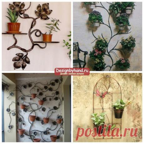 Как можно расположить растения дома, когда не хватает подокоников? | Записки из шкафА | Яндекс Дзен