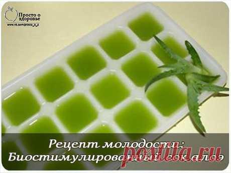 Рецепт молодости - биостимулированный сок алоэ.