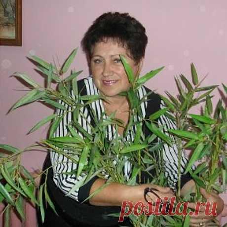 Olga Petuh (Hromova)