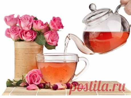 Tea rose – the description, grades, leaving, properties, a photo the Tea rose - the most beautiful rose possessing delicate aroma. From petals of a tea rose it is possible to prepare useful tea, oil of a tea rose and pink water.