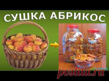 Сушенный абрикос, круга в домашних условиях