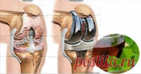 Натуральное средство для укрепления костей и суставов — ГАРМОНИЯ В СЕБЕ