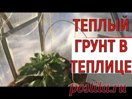 Теплые грядки  Прогреваем грунт в теплице - YouTube