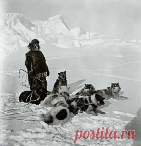 20 октября 1911 года Руаль Амундсен отправился на второй штурм Южного полюса и победил в битве за него. Почему выиграл именно он?