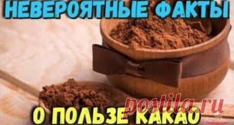 Польза какао - Лучший сайт кулинарии