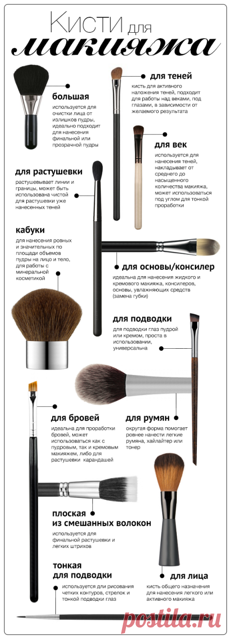 Infographics: 12 brushes for a make-up - I Buy