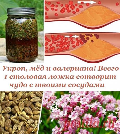 Укроп + мёд + валериана = чудо для твоих сосудов!   Всегда в форме!