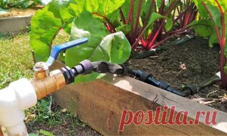 Самотечная система полива огорода и теплицы своими руками. Видео, фото