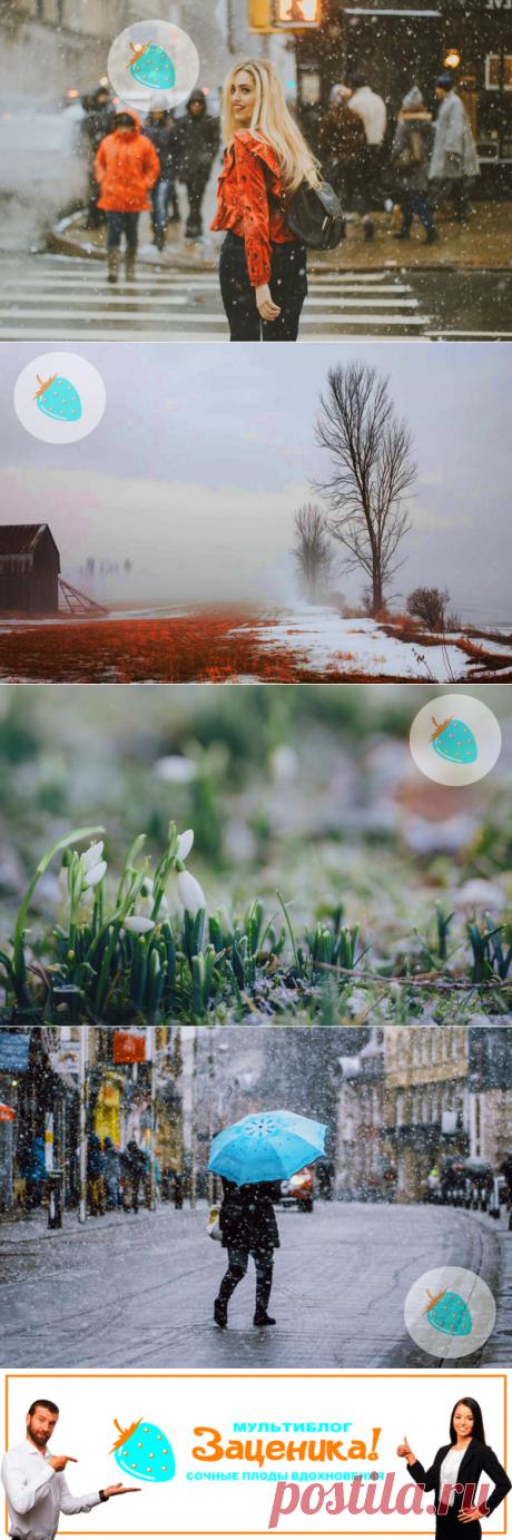 Снег в апреле. Миниатюра-сказка. | Заценика | мультиблог | Яндекс Дзен