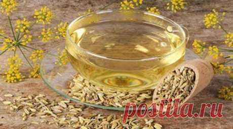 Семена укропа лечебные свойства и противопоказания для здоровья Укроп применяется не только в кулинарии. Его семена обладают лечебными свойствами для здоровья. Настои, отвары, чаи полезны для мужчин, женщин, детей.