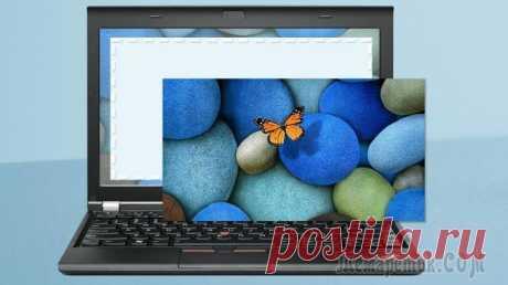 Как передать изображение в комментариях на форумах или блогах!