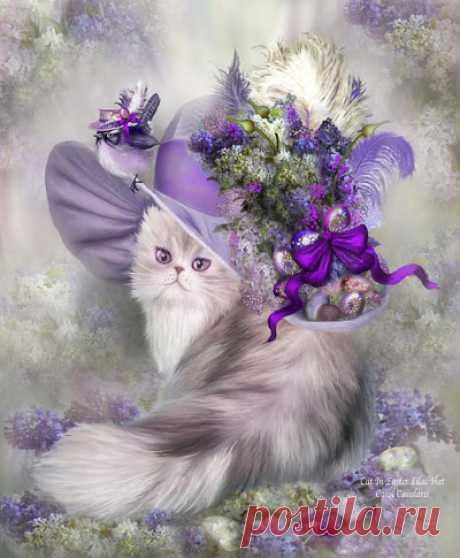 CATS-портал - всё о кошках, домашних и диких.