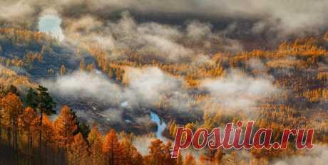 Осень над рекой Нюкжа, поселок Лопча, Амурская область. Автор фото – Дмитрий Демидчик: nat-geo.ru/community/user/27515/