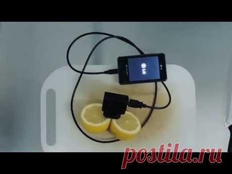 Viral Video UK: Lemon phone charger - заряжаем телефон с помощью лимона.
