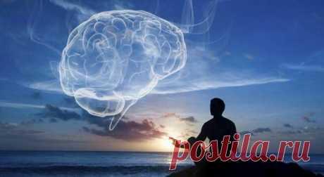 Сила подсознания. Или как самому изменить окружающую картинку | Maria Sviridova | Яндекс Дзен