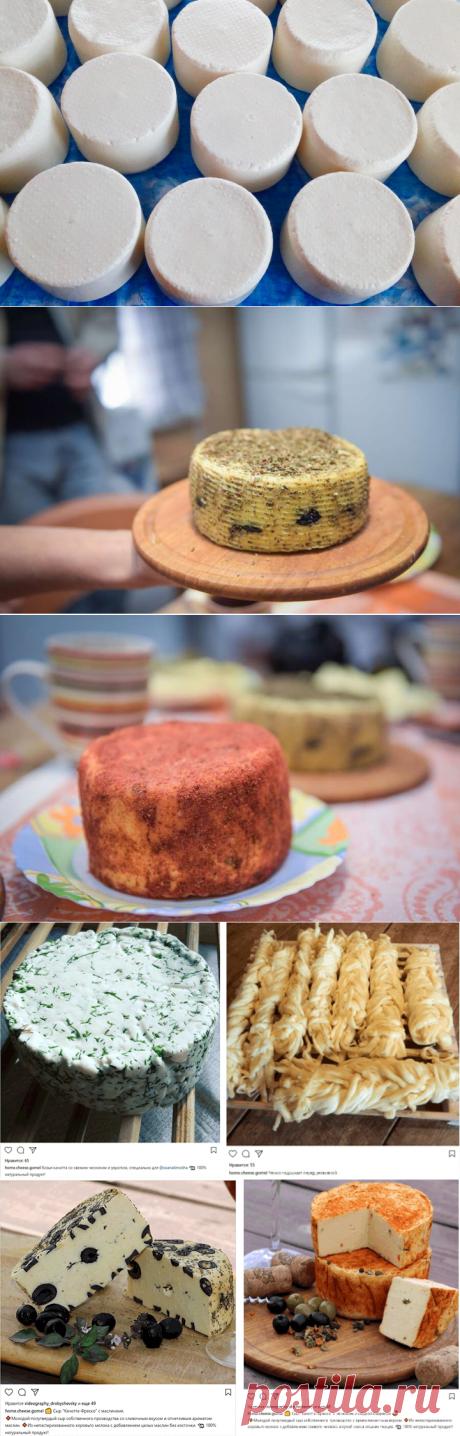 «Если сыр вкусный — о вас узнают везде»  Моцарелла, белпер, качоковалла Тут же на столе как из рога изобилия появляются итальянская качотта с маслинами и прованскими травами, обсыпанные чёрным перцем шарики белпера, копчёный чечил и обжаренный на гриле халуми с мятой. Хранится сырное богатство в отдельном холодильнике, в котором установлена комфортная для вызревания температура. выкройки бычков