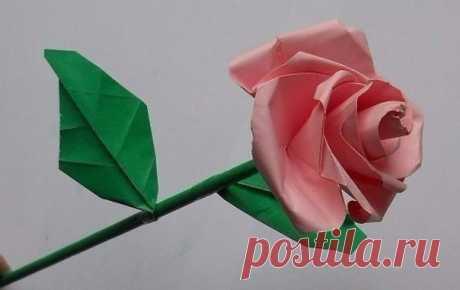 Роза оригами. Мастер-класс