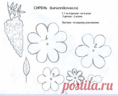 vykroika-sireni.jpg (744×608)