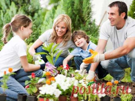 Полезно ли садоводство для детей и всей семьи? - Доска объявлений Краснодарского края   kuban-biznes.ru