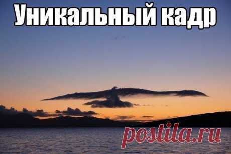 Ольга: Люби того, кем сердце дышит, кем мысли заняты всегда, того кого глаза повсюду ищут, того кого забыть нельзя!!!!!