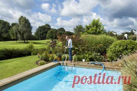 Как сделать бассейн безопасным, чистым и ухоженным? — Ботаничка.ru