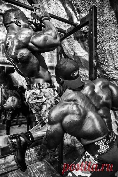 ПАРАЛЛЕЛЬНЫЕ ПОДТЯГИВАНИЯ - САМОЕ НЕДООЦЕНЕННОЕ УПРАЖНЕНИЕ ДЛЯ СПИНЫ #бодибилдинг #качать спину #упражнение для спины #станислав михайловский #bestbodyblog