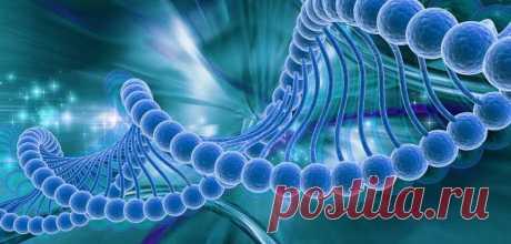 Мощный способ заставить себя делать то, что важно, но не хочется: так работают генетика и нейробиология | BOOKS-FOR-YOU.RU | Яндекс Дзен