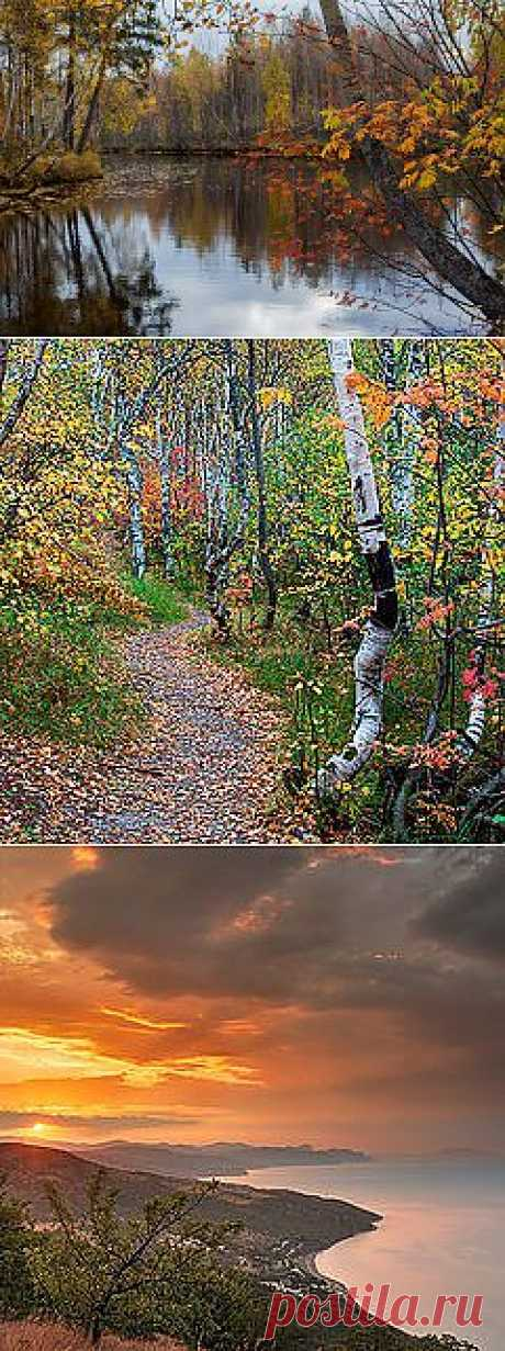 Фото Осенние мотивы - фотограф Галина Щипакина - пейзаж, природа - ФотоФорум.ру