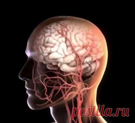 11 эффективных упражнений для улучшения мозгового кровообращения
