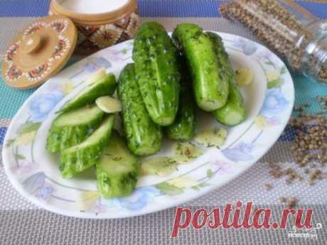 Быстрые малосольные огурцы в пакете - пошаговый рецепт с фото на Повар.ру