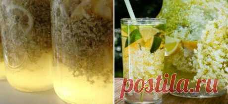 Домашний лимонад из бузины: с пузырьками и приятным цветом | EdaOnelove