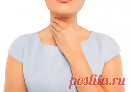 Что любит щитовидная железа? (500-я статья на нашем канале)   Клиника щитовидной железы   Яндекс Дзен