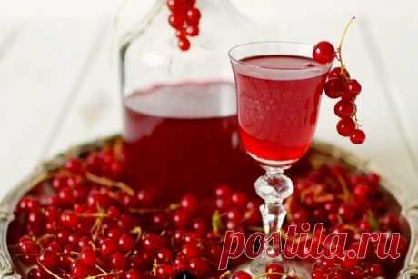 Красносмородиновка: напиток, очень популярный в 19 веке | Русская деревенская кухня | Яндекс Дзен