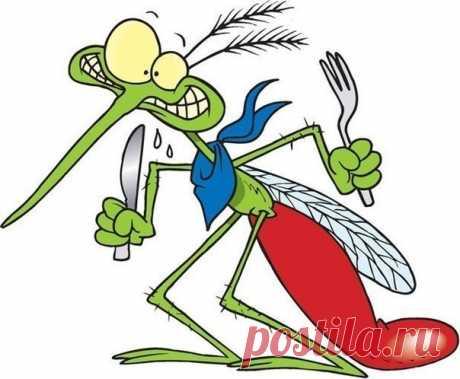 8 убийственных ароматов против комаров