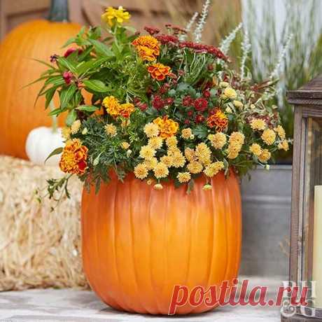 Fall Outdoor Decorating: From Halloween to Thanksgiving | Better Homes & Gardens