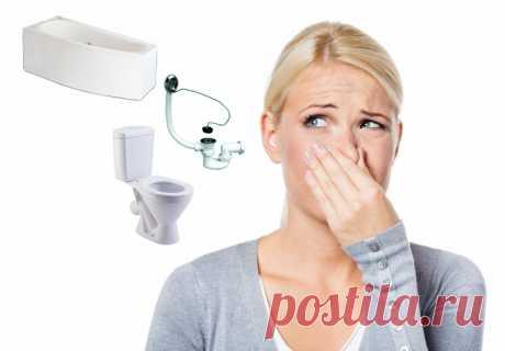 Неприятный запах канализации в ванной: причины и что делать