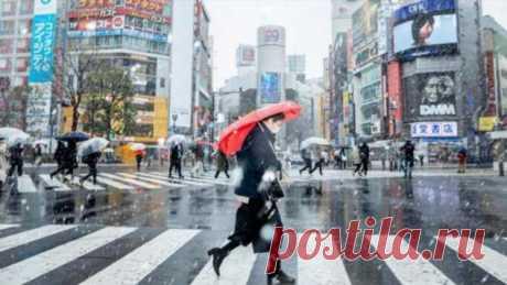 75 фактов о Японии (7 фото) . Тут забавно !!!